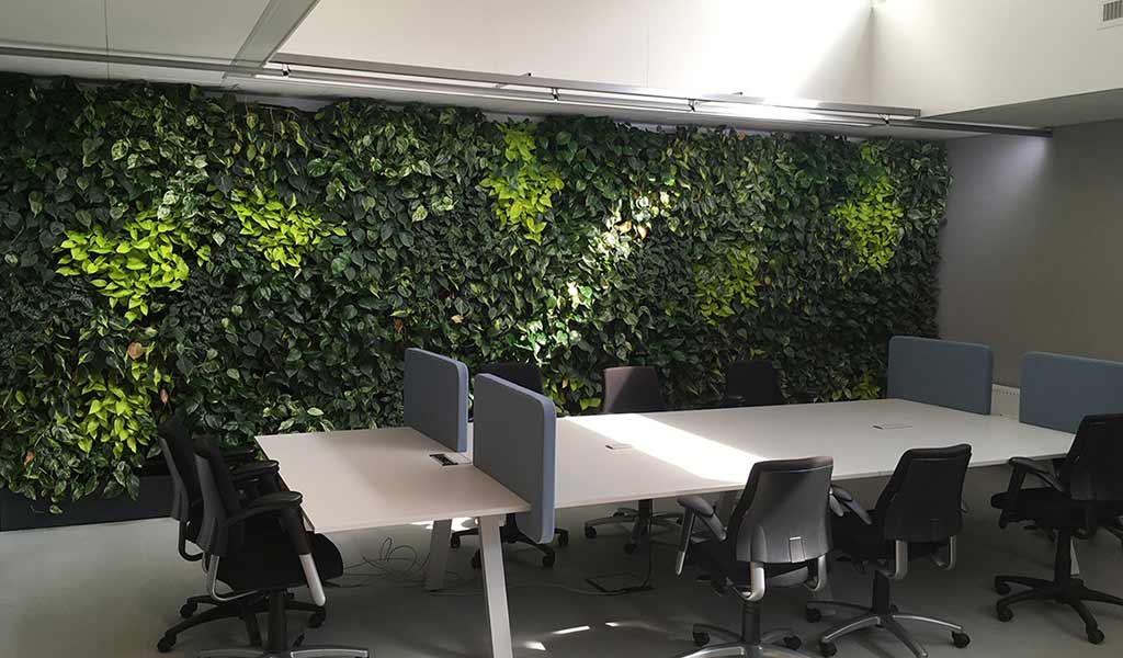 Meeting Room Living Wall